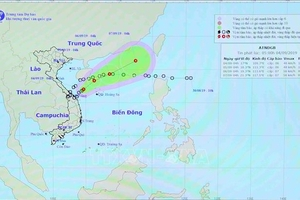 Theo dõi chặt chẽ diễn biến áp thấp nhiệt đới và tiếp tục tìm kiếm 10 người bị mất tích