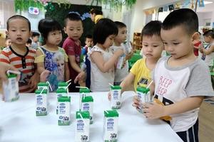 Vì sao Bộ Y tế chậm trễ hướng dẫn tiêu chuẩn sữa học đường?