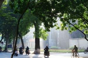 Thời tiết hôm nay 5/11: Hà Nội trưa chiều trời nắng, nhiệt độ phổ biến 28-30 độ C
