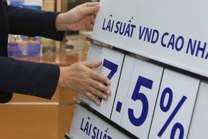 Xu hướng giảm lãi suất trở lên rõ nét hơn ở Việt Nam