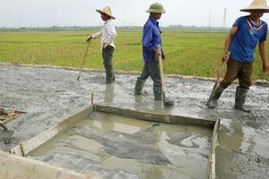 Tân Thành Đạt chỉ trúng thầu ở huyện Văn Giang (Hưng Yên)