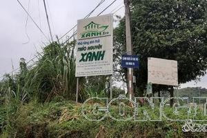 """Lào Cai: Trang trại """"đặc biệt"""" của gia đình Phó Chủ tịch thành phố"""