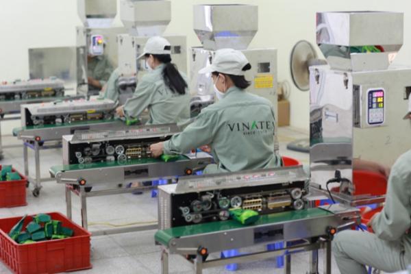 Quy trình sản xuất trà phải thông qua sự kiểm định khắt khe
