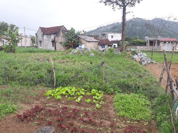 Thửa đất đã được lãnh đạo cấp thôn bán cho người dân địa phương