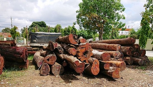 Tang vật trong vụ vận chuyển gỗ lậu