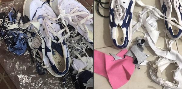Các đôi giày vải của Công ty giày Thượng Đình nhét rất nhiều rác thải của chính ngành da giày: Vải, giả da, pvc..