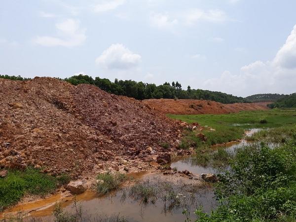 Nhiều ha đất nông nghiệp của người dân xã Bảo Thanh trồng lúa nay bị san lấp tại dự án Công viên Thiên Đức Vĩnh Hằng.