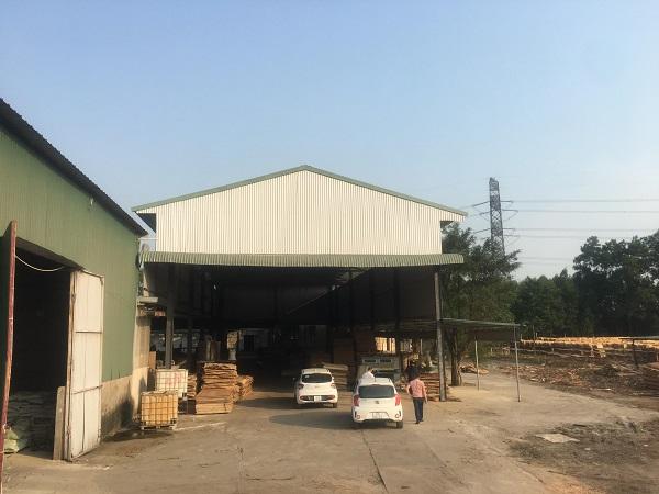 """Nhiều nhà xưởng không phép """"mọc"""" trên đất lâm nghiệp của bà Liên tại thôn Đoàn Kết 1, xã Đạo Tú, huyện Tam Dương."""