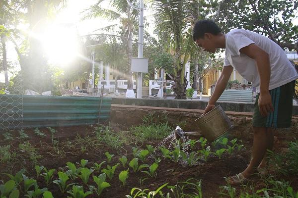 Chiến sĩ đảo Sơn Ca tăng gia trồng rau xanh sau giờ huấn luyện. Ảnh: Trường Phong