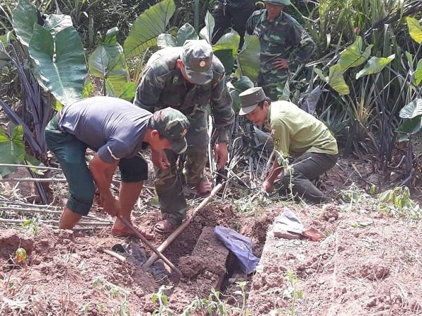 Lực lượng chức năng khai quật kho gỗ mun quý hiếm tại vườn nhà ông Kính.
