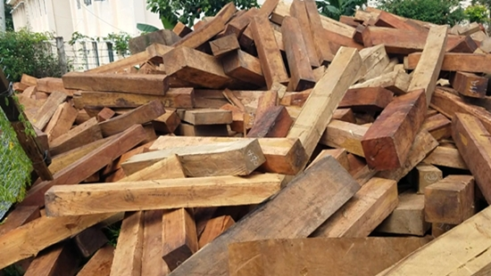 Vụ gỗ lậu ở huyện Mang Yang: Tra số điện thoại xác định đối tượng đe dọa cán bộ bảo vệ rừng