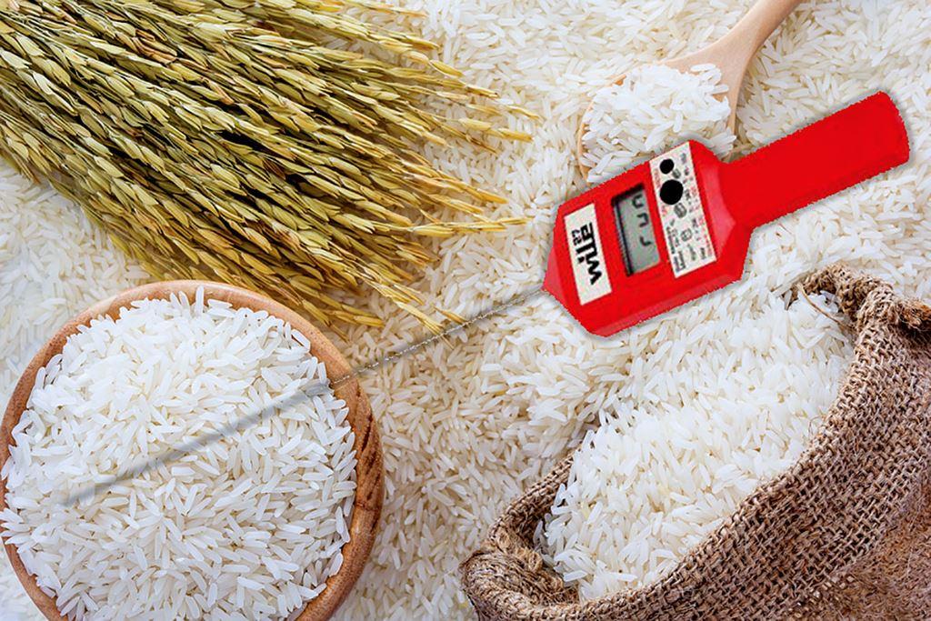 Nội dung chính của Gói thầu Mua sắm tài sản phục vụ công tác bảo quản lương thực dự trữ quốc gia là cung cấp 58 máy đo nồng độ khí N2; 34 xiên đo nhiệt độ, độ ẩm... Ảnh: Mai Quân