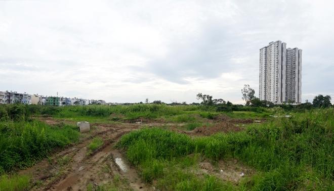 Sau nhiều năm được rao bán, đất nền tại một dự án vẫn để cỏ mọc hoang hóa.
