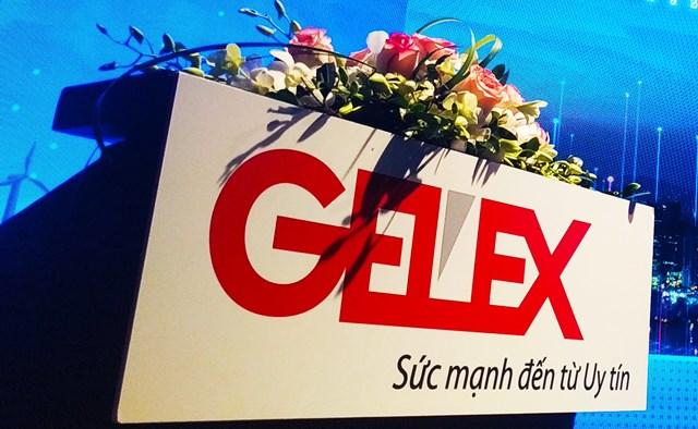 Gelex đang là cổ đông lớn thứ hai của Viglacera. Ảnh: Đức Quyền.
