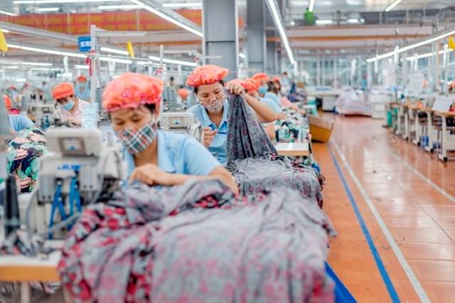 May Sông Hồng báo lãi năm 2020 giảm 48% - Ảnh 1