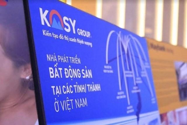 Sau kiếm toán, lãi ròng của KOSY giảm 3,3 tỷ đồng, nhiều tài sản đang được thế chấp - Ảnh 1