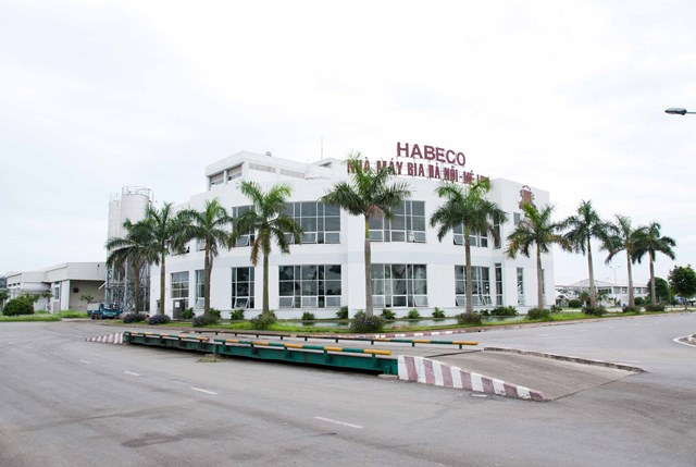 Habeco báo lãi 62 tỷ đồng quý đầu năm - Ảnh 1