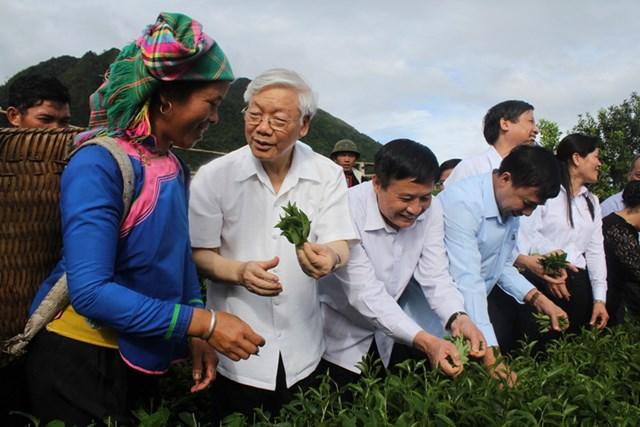 Tổng bí thư Nguyễn Phú Trọng trao đổi với bà con dân tộc nơi đây và tham gia hái chè cùng bà con xã Bản Bo.