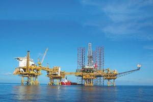 PVEP thu hơn 17.000 tỷ trong 7 tháng