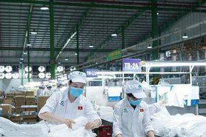 An Tiến Industries (HII): Lập kỷ lục doanh thu nhờ giá hạt nhựa tăng mạnh