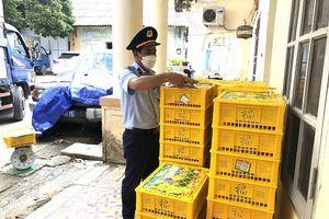 Lạng Sơn: Tạm giữ 1,65 tấn Nho xanh nhập lậu