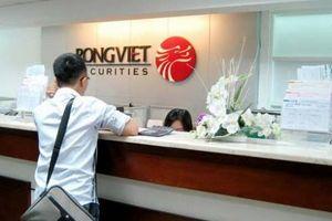 Chứng khoán Rồng Việt trả cổ tức bằng cổ phiếu tỷ lệ 5%