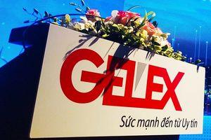 HĐQT Viglacera chấp thuận việc chào mua của Gelex