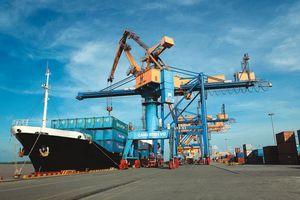 Gói thầu cấp điện Cảng Vinalines Đình Vũ: Chủ đầu tư bảo lưu quan điểm loại nhà thầu