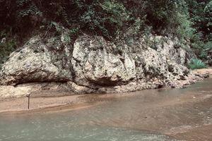 Thanh Hóa phê duyệt phương án nộp tiền trồng rừng thay thế tại Dự án Thuỷ điện Sông Âm