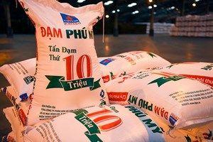 Cổ phiếu DPM: Hưởng lợi tạm thời nhờ giá dầu giảm và nhu cầu phân bón thế giới