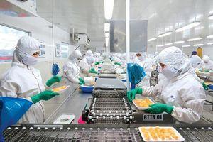 Cổ phiếu FMC: Sự phục hồi tăng trưởng mạnh mẽ của ngành tôm xuất khẩu nhờ các hiệp định thương mại
