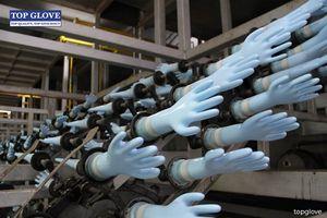 Mỹ cấm nhập sản phẩm của tập đoàn găng tay lớn nhất thế giới