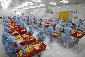 Lũy kế 5 tháng đầu năm, xuất khẩu nông lâm thủy sản ước đạt 23 tỷ USD