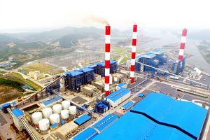Nhiệt điện Quảng Ninh trả cổ tức năm 2020 bằng tiền mặt với tỷ lệ 10%