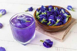 Lợi ích tuyệt vời của trà hoa đậu biếc đối với sức khỏe con người