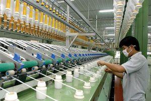 Sợi Thế Kỷ (STK): Nhà máy sợi Unitex với công suất 60,000 tấn tạo động lực tăng trưởng mạnh mẽ về dài hạn