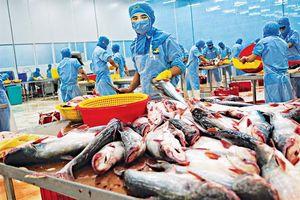 VDSC: Ngành thủy sản - Tác động của giãn cách xã hội sẽ thấy rõ từ tháng 8 trở đi