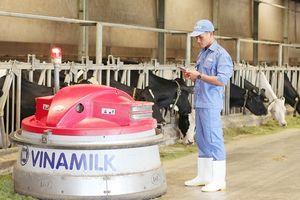 """Thế hệ trẻ và những lý do khao khát """"đầu quân"""" cho một công ty sữa Việt"""