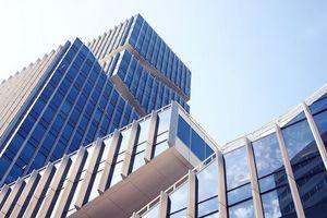 Bamboo Capital báo lãi quý 2 đạt 316 tỷ đồng, vay nợ tăng mạnh
