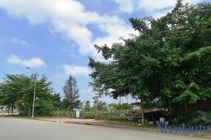 Đất 'vàng' dự án TECCO Hà Tĩnh thu hồi đấu giá, tìm nhà đầu tư mới