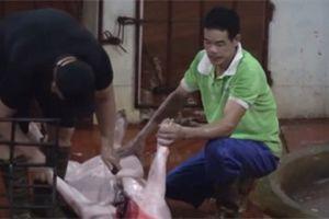 Lò mổ 'chui' ngang nhiên hoạt động trong khu dân cư Hà Nội