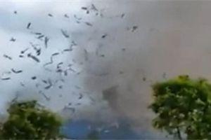 Video: Dông lốc cuốn bay mái tôn xưởng gỗ ở Vĩnh Phúc