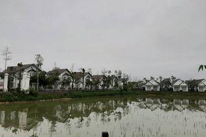 Dự án Vườn Vua (Phú Thọ) tự ý chuyển đổi mục đích sử dụng đất với diện tích khoảng 108.000m2