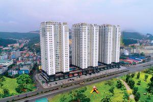 """Bất động sản Hạ Long: """"Cơn khát"""" chung cư trong các khu đô thị hiện đại"""