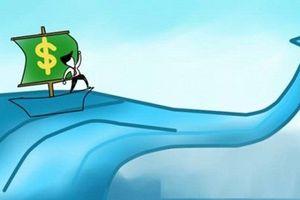 Xử phạt một cá nhân do lướt sóng cổ phiếu DHA