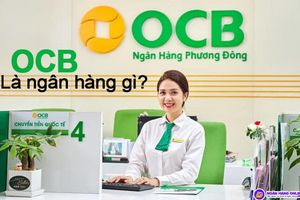 OCB: Ngân hàng đa dạng hóa hoạt động thúc đẩy ROE