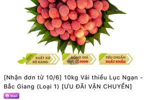 Các sàn thương mại điện tử lớn đồng loạt mở bán vải thiều Bắc Giang