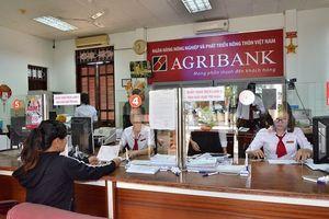 Kế hoạch kinh doanh Agribank 2020: Mục tiêu lãi trước thuế tối thiểu 12.200 tỉ đồng, tập trung mọi nguồn lực để cổ phần hóa