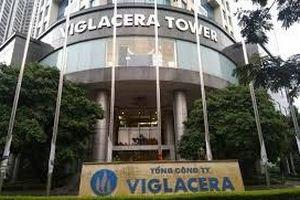 ĐHCĐ Gelex: Đưa ra kế hoạch kinh doanh sau khi hợp nhất với Viglacera