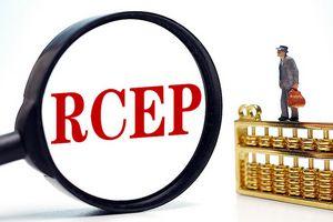 VDSC: Tác động tích cực từ hiệp định RCEP lên Việt Nam là tương đối hạn chế
